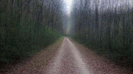 bike-trail_01_small